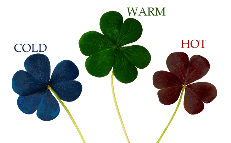 cold warm hot three leaf clover ppc callsource